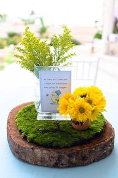 Winnie The Pooh Party Decor | Hundred Acre Woods Decor | Winnie The Pooh Centerpieces | Winnie The Pooh Cake | Winnie The Pooh Backdrop | Decor by RED Entertainment