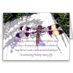 dragonflies meaning