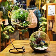 Bricolaje micro bola de cristal colgante paisaje planta con la decoración casera bastidor de hierro