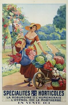 vintage seed packet and flower catalog art .