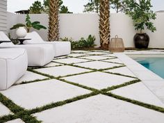 rice white peacock pavers - Google Search