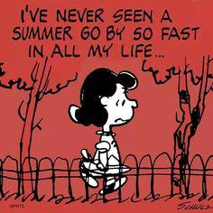 Peanuts summer's gone Peanuts Quotes, Snoopy Quotes, Peanuts Cartoon, Peanuts Snoopy, Peanuts Comics, 5am Club, No Kidding, Lucy Van Pelt, Peanuts Characters