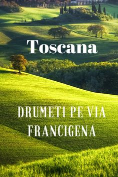 Toscana - Drumeți pe Via Francigena - PhotoTraveler Toscana, Vineyard, Movies, Movie Posters, Outdoor, Cots, Rome, Outdoors, Film Poster