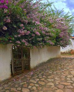 Pueblos Patrimonio de Colombia Oh The Places You'll Go, Cali, Beautiful Places, Backyard, Nature, Travel, Colombian Food, Villa De Leyva, Patio