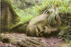 ''Голова гиганта'' в саду Хэлигана