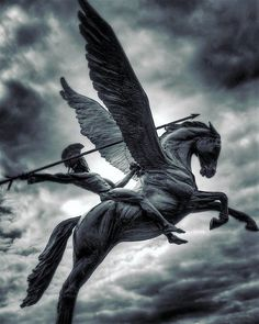 #Bellerophon, warrior hero of #greek  mythology riding the winged divine stallion, #Pegasus. (Photographer: Diiogo Ruhl)