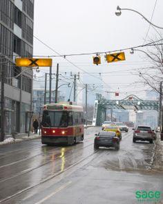 Leslieville - Sage Real Estate Ltd. Maple Tree, Famous Landmarks, Toronto, The Neighbourhood, Street View, Real Estate, Explore, History, The Neighborhood