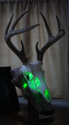 WHITETAIL DEER SKULL EUROPEAN SKULL MOUNT LIGHT KIT GREEN DEER SKULL TAXIDERMY in Sporting Goods, Hunting, Taxidermy | eBay