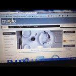93 Best Norske bedrifter på Instagram images | Photo and