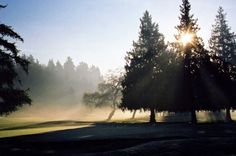 The gorgeous greens, at Vancouver's Marine Drive Golf Club l Vancouver, BC Wedding Locations, Marines, Golf Clubs, Vancouver, Wedding Ceremony, Country Roads, Weddings, Bride, Sunset