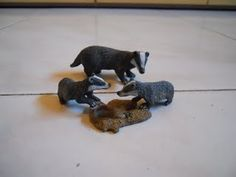 Tasso europeo (Schleich); badgers animals #animals