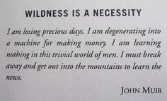 wildness and Muir