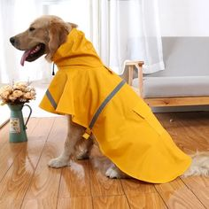 Outdoor Adjustable Dog Raincoat Pet Puppy Lightweight Rain Jacket Poncho Waterproof with Reflective Strip in Rainy Day (S-XXL) Blue/Yellow/Orange > Check out this great image : Dog coats Dog Raincoat, Raincoat Jacket, Yellow Raincoat, Hooded Raincoat, Dog Jacket, Big Dogs, Large Dogs, Small Dogs, Costume Chien
