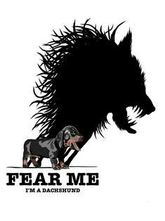 Fear Me! I'm a Dachshund