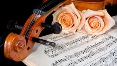 Classical wedding music is the most traditional type of music chosen for weddings, perfect for setting an elegant mood for the ceremony. Wedding Ceremony Music, Wedding Songs, Wedding Tips, Wedding Blog, Diy Wedding, Perfect Wedding, Wedding Stuff, Wedding Verses, Wedding Rehearsal