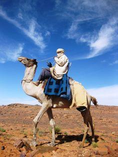Pow 13 Imp 1 Corey Camel