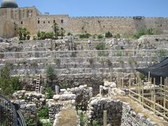 10. Ophel - Jerusalem: The Hebrew term Ophel in the topographical sense means prominent hill or promontory.    The scriptural indications taken with the comments of Josephus locate Ophel at the SE corner of Moriah. (2 Ch. 27:3; 33:14, Ne. 3:26,27; 11:21)