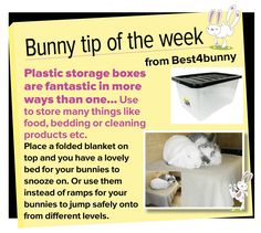 Bunny tip - week 15 Plastic storage boxes are fantastic in more ways than one!