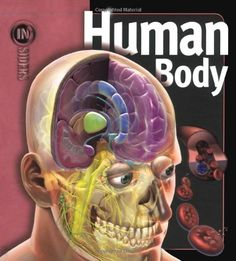 Human Body (Insiders) by Linda Calabresi