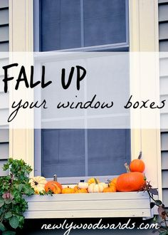 Fall-ified window boxes with pumpkins