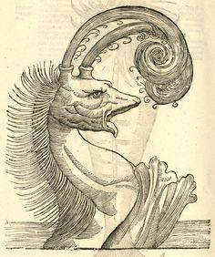 Illustrations fromMonstorum Historiaby Ulissi Aldrovandi — 1642