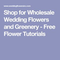 Shop for Wholesale Wedding Flowers and Greenery - Free Flower Tutorials Wedding Supplies Wholesale, Diy Wedding Flowers, Floral Supplies, Flower Tutorial, Calla Lily, Greenery, Tutorials, Shop, Free