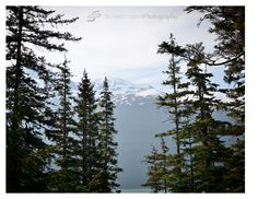 Alaska| Mountain Snowcap 2015| Orlando Photographer| Landscape Photography| Sliwa Studios Photography