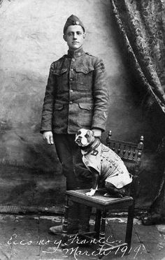 The terrier puppy whose owner smuggled him aboard SS Minnesota became a World War I hero. #VeteransDay