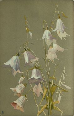 """""""Hare-bells"""" by Catherine Klein ~ 1907."""