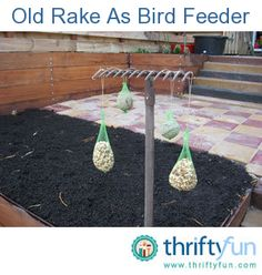 You do not need to throw away old gardening tools, this rake functions very well as a bird feeder :)