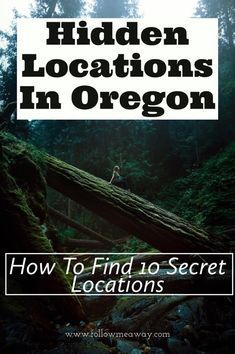 Oregon Travel Tips Traveling To United States United States Oregon Things To Do In Oregon West Coast Places To See In Oregon Backpacking Budget Bucketlist Us Wanderlust Things To Do Things To See Places To Go Culture Food Tourism Like A Local Oregon Vacation, Oregon Road Trip, Oregon Trail, Portland Oregon, Central Oregon, Oregon Coast Roadtrip, Portland Hikes, Oregon Hiking, Oregon Camping