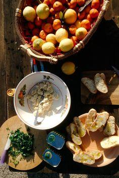 Zisolhouse, Sicily. I veri sapori di Sicilia in una fattoria - the true flavours of Sicily on a farm organicholidays.com/at/2582.htm Wine Recipes, Great Recipes, Citrus Garden, Relaxing Day, Limoncello, Sicilian, Cooking Classes, Farming, Asparagus