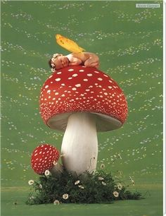 Fantasy mushrooms.......