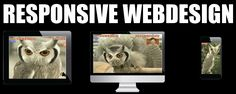 Make Your e-Store Responsive http://www.templatemonster.com/blog/things-to-remember-when-creating-a-store/