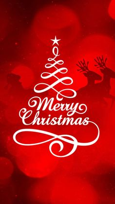 Merry Christmas Cheer, Blessings, Holiday, Neon Signs, Vacations, Vacation, Cheerleading, Cheer Athletics