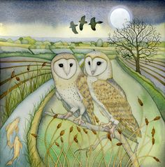 Barn Owls. Giclee print on A3 paper by kategreen on Etsy