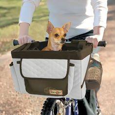 What a cute dog bike basket