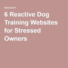 6 Reactive Dog Training Websites for Stressed Owners