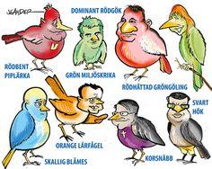 Politisk ornitologi