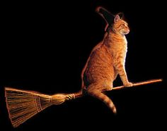 chat roux halloween