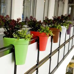 maceta balcony_tls