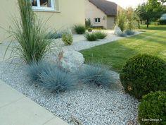 Paysagiste-entrée avec graminées fétuques bleues, calamagrostis et penissetum. Conception par eden-design.fr