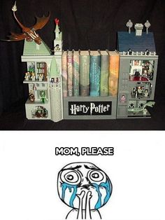 Omg! Omg! Lego HP book case thing-y .