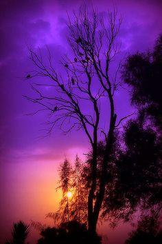 Sunset At Areen Purple Sky - ©Sonny Saguil (DarkGrey) - Beautiful Sunset, Beautiful World, Beautiful Places, Beautiful Scenery, Pintura Graffiti, Foto Nature, Purple Sky, Deep Purple, All Things Purple