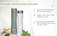 Amway Business, Nutrilite, Voss Bottle, Amway Products, Beauty, Store, Hair, Face Cleaning, Hair Loss