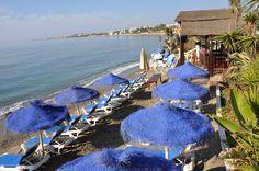 beach blue umbrellas
