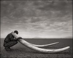 Nick Brandt : Across The Ravaged Land - shooting in African with black and white film