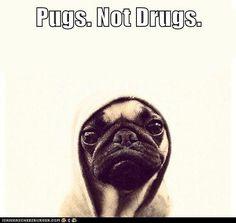 No drugs, be drug free, well cept caffeine, and prozac and prilosec.....