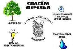 Мы же хотим сбор макулатуры, верно? Кликаем тут и добиваемся его для себя http://irecycle.ru/wastepaper1