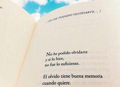 No he podido olvidarte...